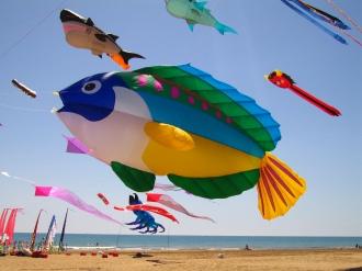 pesce che vola